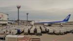 westtowerさんが、成田国際空港で撮影した全日空 767-381/ERの航空フォト(写真)