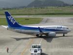 MARK0125さんが、新石垣空港で撮影した全日空 737-781の航空フォト(写真)