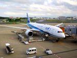 まいけるさんが、成田国際空港で撮影した全日空 787-8 Dreamlinerの航空フォト(写真)
