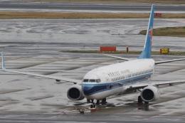 camelliaさんが、羽田空港で撮影した中国南方航空 737-81Bの航空フォト(写真)