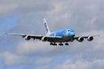気分屋さんが、成田国際空港で撮影した全日空 A380-841の航空フォト(写真)