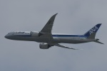 たっしーさんが、香港国際空港で撮影した全日空 787-9の航空フォト(写真)