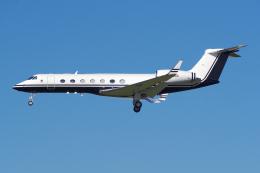 PASSENGERさんが、ロサンゼルス国際空港で撮影したノリノール・エビエーション G500/G550 (G-V)の航空フォト(飛行機 写真・画像)