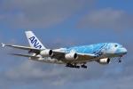 飛行機ゆうちゃんさんが、成田国際空港で撮影した全日空 A380-841の航空フォト(飛行機 写真・画像)