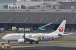camelliaさんが、羽田空港で撮影した日本航空 737-846の航空フォト(写真)