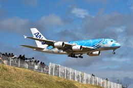 kina309さんが、成田国際空港で撮影した全日空 A380-841の航空フォト(写真)