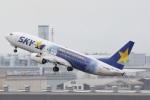 camelliaさんが、羽田空港で撮影したスカイマーク 737-81Dの航空フォト(写真)