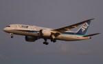 BOEING737MAX-8さんが、成田国際空港で撮影した全日空 787-8 Dreamlinerの航空フォト(写真)