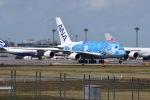 Timothyさんが、成田国際空港で撮影した全日空 A380-841の航空フォト(写真)