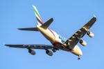 Cozy Gotoさんが、成田国際空港で撮影したエミレーツ航空 A380-861の航空フォト(写真)