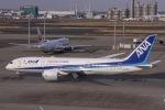 ぐっちーさんが、羽田空港で撮影した全日空 787-8 Dreamlinerの航空フォト(写真)