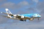 new_2106さんが、成田国際空港で撮影した全日空 A380-841の航空フォト(写真)