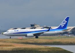 じーく。さんが、岩国空港で撮影した全日空 737-881の航空フォト(写真)