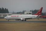 F.Kaito.⊿46さんが、鹿児島空港で撮影したイースター航空 737-86Jの航空フォト(写真)