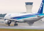 MASACHANさんが、宮崎空港で撮影した全日空 A321-211の航空フォト(写真)