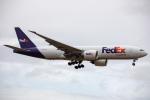チャッピー・シミズさんが、成田国際空港で撮影したフェデックス・エクスプレス 777-FS2の航空フォト(写真)