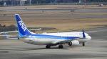 リンダさんが、伊丹空港で撮影した全日空 737-881の航空フォト(写真)