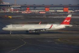 ちゅういちさんが、シェレメーチエヴォ国際空港で撮影したノードウィンド航空 A321-231の航空フォト(飛行機 写真・画像)