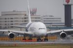 飛行機ゆうちゃんさんが、成田国際空港で撮影したマレーシア航空 A380-841の航空フォト(写真)