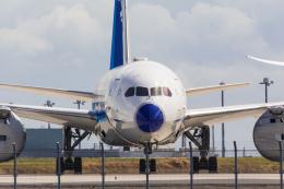 たーぼーさんが、羽田空港で撮影した全日空 787-8 Dreamlinerの航空フォト(写真)