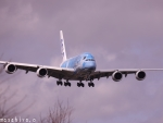 のび太2905さんが、成田国際空港で撮影した全日空 A380-841の航空フォト(写真)