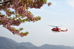 Gambardierさんが、岡南飛行場で撮影した岡山県消防防災航空隊 412EPの航空フォト(写真)