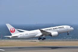 @たかひろさんが、中部国際空港で撮影した日本航空 787-8 Dreamlinerの航空フォト(写真)