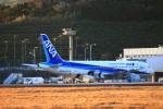 zero1さんが、八丈島空港で撮影した全日空 A320-211の航空フォト(写真)