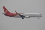 ぽんさんが、香港国際空港で撮影した深圳航空 737-87Lの航空フォト(写真)