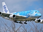 kazupen2018さんが、成田国際空港で撮影した全日空 A380-841の航空フォト(写真)