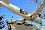 ひこりんさんが、成田国際空港で撮影した全日空 787-9の航空フォト(写真)