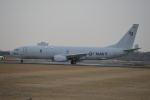 350JMさんが、厚木飛行場で撮影したアメリカ海軍 P-8A (737-8FV)の航空フォト(写真)