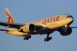 RJAAで撮影されたカタール航空カーゴ - Qatar Airways Cargo [QAC]の航空機写真