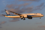 やつはしさんが、成田国際空港で撮影した全日空 787-9の航空フォト(写真)