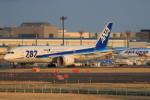 やつはしさんが、成田国際空港で撮影した全日空 787-8 Dreamlinerの航空フォト(写真)