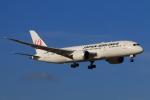 やつはしさんが、成田国際空港で撮影した日本航空 787-8 Dreamlinerの航空フォト(写真)