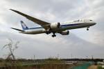 HK Express43さんが、伊丹空港で撮影した全日空 787-9の航空フォト(写真)
