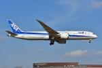 kozikoziさんが、成田国際空港で撮影した全日空 787-9の航空フォト(写真)