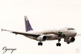おがりょうさんが、鹿児島空港で撮影した香港エクスプレス A320-232の航空フォト(飛行機 写真・画像)