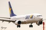 おがりょうさんが、鹿児島空港で撮影したスカイマーク 737-81Dの航空フォト(写真)