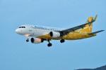 Dojalanaさんが、函館空港で撮影したバニラエア A320-214の航空フォト(写真)