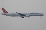 ぽんさんが、香港国際空港で撮影したターキッシュ・エアラインズ 777-3F2/ERの航空フォト(写真)