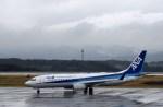 よんすけさんが、静岡空港で撮影した全日空 737-881の航空フォト(写真)