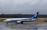 よんすけさんが、静岡空港で撮影した全日空 737-8ALの航空フォト(写真)