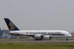 banshee02さんが、成田国際空港で撮影したシンガポール航空 A380-841の航空フォト(写真)