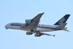 空が大好き!さんが、関西国際空港で撮影したシンガポール航空 A380-841の航空フォト(写真)