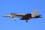 harahara555さんが、厚木飛行場で撮影したアメリカ海軍 F/A-18C Hornetの航空フォト(写真)