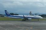 kuro2059さんが、鹿児島空港で撮影した全日空 A321-272Nの航空フォト(写真)
