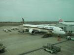 hachiさんが、台湾桃園国際空港で撮影したシンガポール航空 787-10の航空フォト(写真)