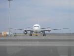 hachiさんが、羽田空港で撮影した日本航空 767-346/ERの航空フォト(写真)